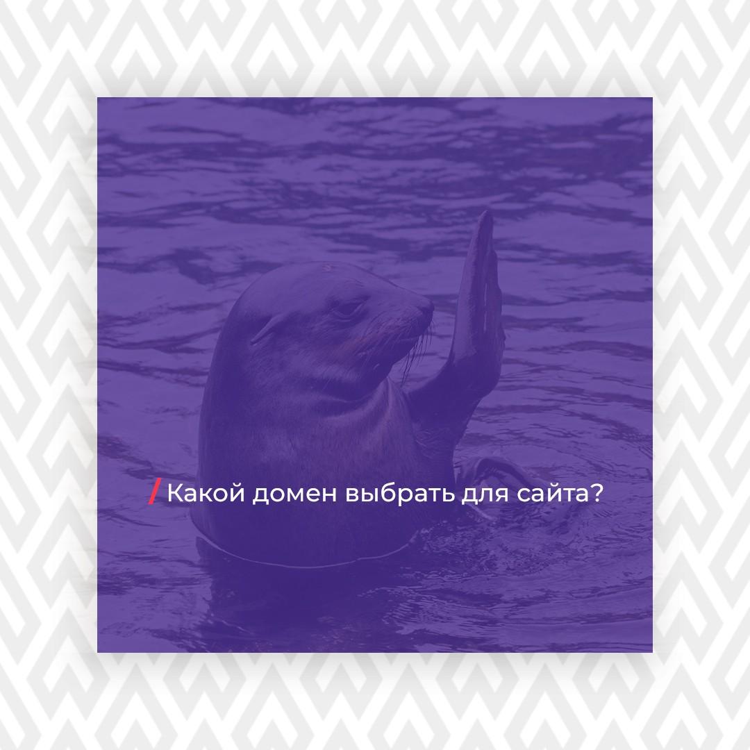kakoi domen vybrat dlya saita - Какой домен выбрать для сайта?